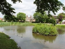 Pond_on_Tylers_Green,_near_Penn_-_geograph_org_uk_-_19407