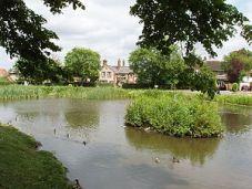 Pond_on_Tylers_Green,_near_Penn_-_geograph_org_uk_-_19407